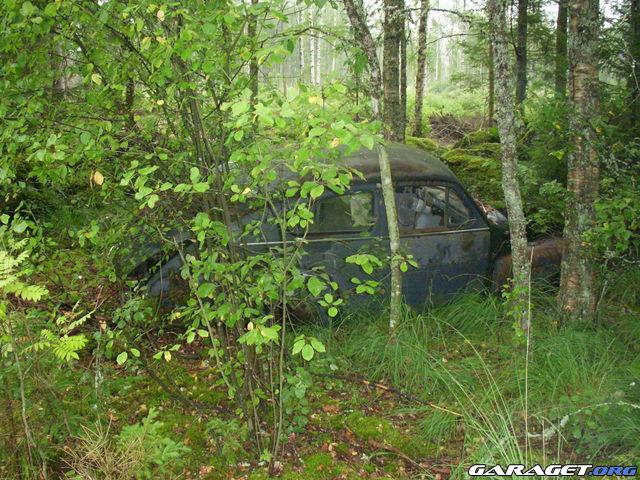 http://www1.garaget.org/gallery/archive/28713/359664_4umv2i.jpg
